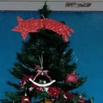 Donem la Benvinguda al Nadal